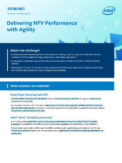 NFV Performance with Agility for CoSPs